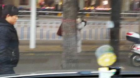 """临汾:尧都区解放路街头""""飘""""过一神仙美女"""