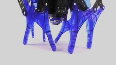 【赫宝VEX机器人系列】斯坦比怪兽套装