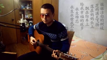 周峰/韩红-《梨花又开放》-吉他弹唱-殷鹏