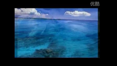 邓丽君《海韵》口琴卡拉ok+小提琴纯音乐+电子琴背景音乐图片