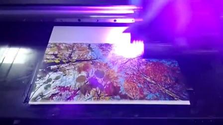 UV平板打印机 瓷砖 墙画 电视背景墙3D 浮雕墙面彩绘墙体uv喷绘机