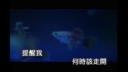 罗志祥-小丑鱼(高清珍藏版)