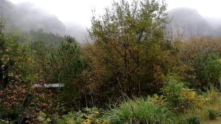 云雾缭绕的龙虎山象鼻山