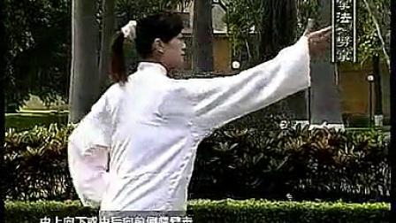 42式太极拳基本动作规格《学习秘籍》_标清