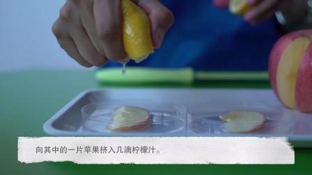 嘟嘟博士的实验课堂:苹果和柠檬
