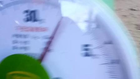 小武士写真视频