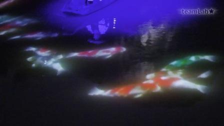 靠近锦鲤舟楫共舞在水面形成——武雄池塘