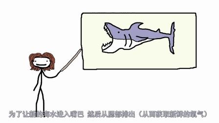 动物的那些弱点:进化前能不能帮我考虑清楚点