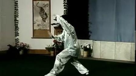 杨式四十式太极拳竞赛套路教学(一)  全套动作正面演练_标清
