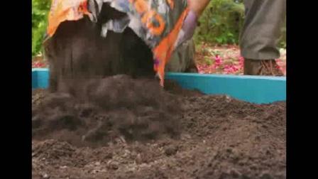 【爱家小哥】爱分享之《DIY立体旋转小花园》