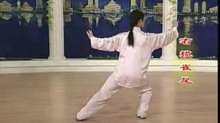 二十四式简化太极拳整套演练_背向_标清