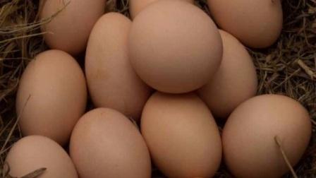 日常中鸡蛋有哪些错误的吃法?常吃鸡蛋对身体有什么好处?