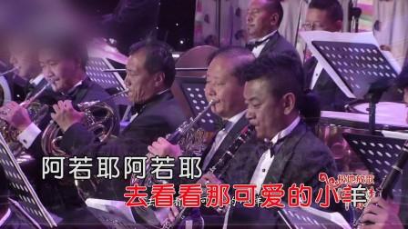 孙媛 - 多吉的家(演唱会HD1080P)