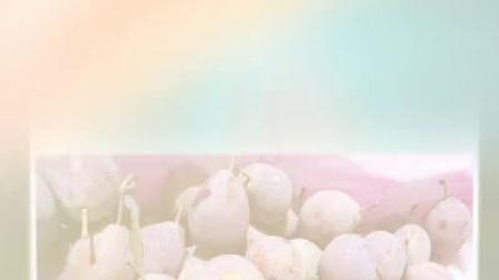 西梅苗 新品种西梅 法兰西西梅苗 西梅苗价格   西梅苗供应 陕西西梅苗  新疆西梅苗 甘肃西梅苗  西梅果树  西梅营养价值  西梅苗木基地 西梅产地  西梅