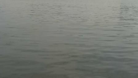 门前西江河