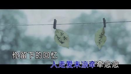 金钰儿-人走爱未凉(原版)红日蓝月KTV推介