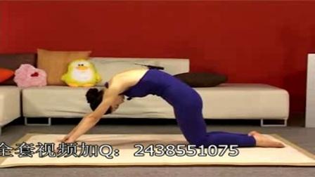 流瑜伽平衡瑜伽从零开始瑜伽莫汉基础瑜伽美容瑜伽中级瑜伽
