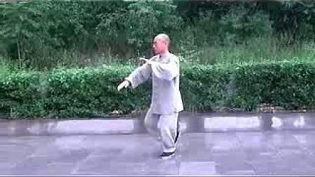 精品 正宗杨式太极拳85式教学(精讲十一) 永年李占英 2012年新版_clip_苹果_320x240