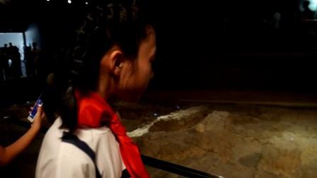 参观南京大屠杀