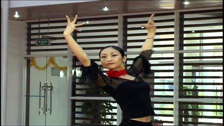 拉丁舞拉丁舞自学拉丁舞初级教学拉丁舞表演视频拉丁舞基本动作