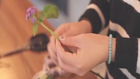 盆栽花卉图片 乐享花艺 花艺