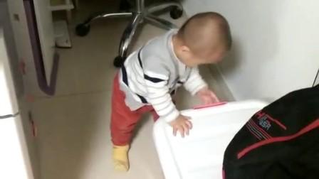 小家伙到处跑