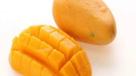芒果不能与什么食物同食