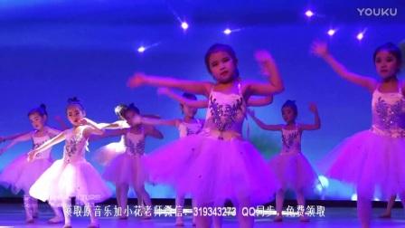 2018幼儿元旦舞蹈《公主的梦想》活泼可爱