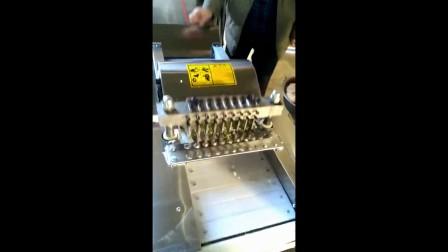 鸡肉分割机-冻肉切块机-鸡肉分割机