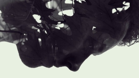 BREEDER - ADBNE 2013 – Opening Titles