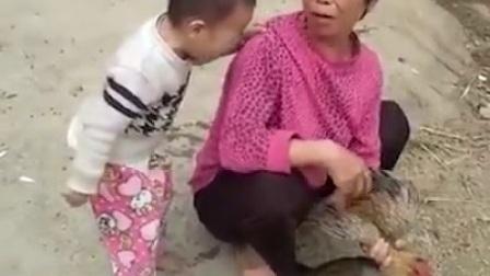童心慈悲禁止杀鸡