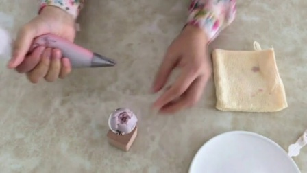 24样蛋糕裱花视频教程 想学裱花 裱花蛋糕仙鹤的技法