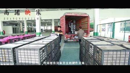 【尚诺映像机构】吴江经济开发区华东水果批发市场宣传片