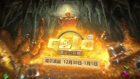 12月30日 岛猫 vs 小小书生 专业组 小组赛 2017炉石传说黄金公开赛哈尔滨站