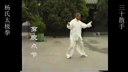 杨式太极拳萧氏内家拳三十散手--剪腕点节