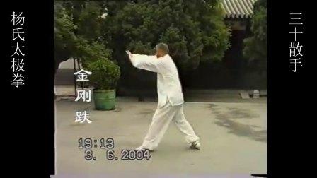 杨式太极拳萧氏内家拳三十散手--金刚跌