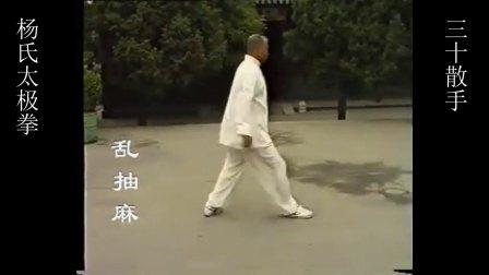 杨式太极拳萧氏内家拳三十散手--乱抽麻
