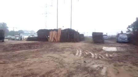 大量绿化杆