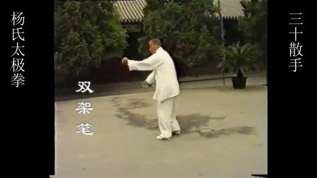 府内派萧氏内家拳杨式太极拳三十散手——双架笔