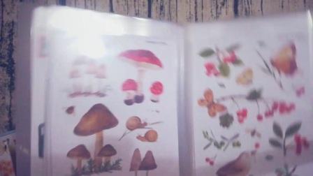 【小妮Moni】双十一到圣诞节的手帐相关购物分享