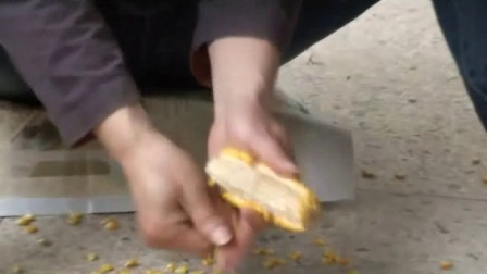 简易家用玉米脱粒机