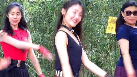 北京紫竹院公园广场舞《雪山阿佳》20170617