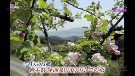 《北国之春》原来是首日本歌, 原唱这么唱就对了