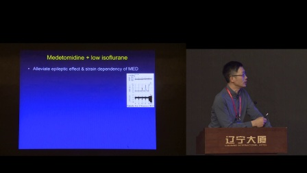 ISBMG 2017 Kai Hsiang Chuang: resting-state fMRI of the rodent brain