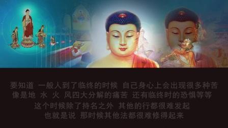 佛说无量寿经  第四十九讲 (智圆法师.讲述)