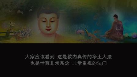 佛说无量寿经 第六十讲(智圆法师.讲授)