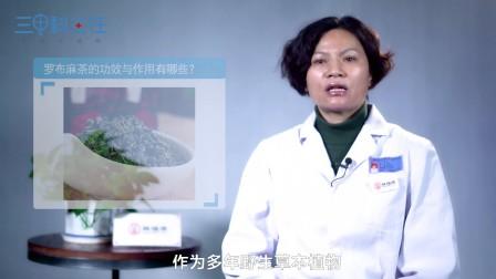 罗布麻茶的功效与作用有哪些?-仲晓慧