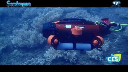 TTRobotix SeaDragon 遥控潜水艇 ROV