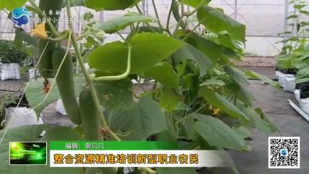 【聚焦三农】整合资源精准培训新型职业农民