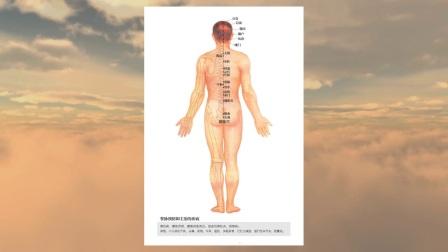 简明《实用医学》教程系列之《经络与穴位》第二十二讲——任脉 督脉上的穴位